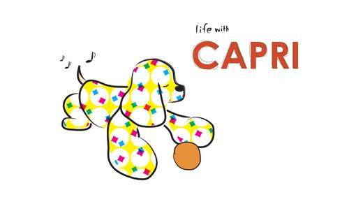Capri2_3