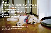 Messeji2